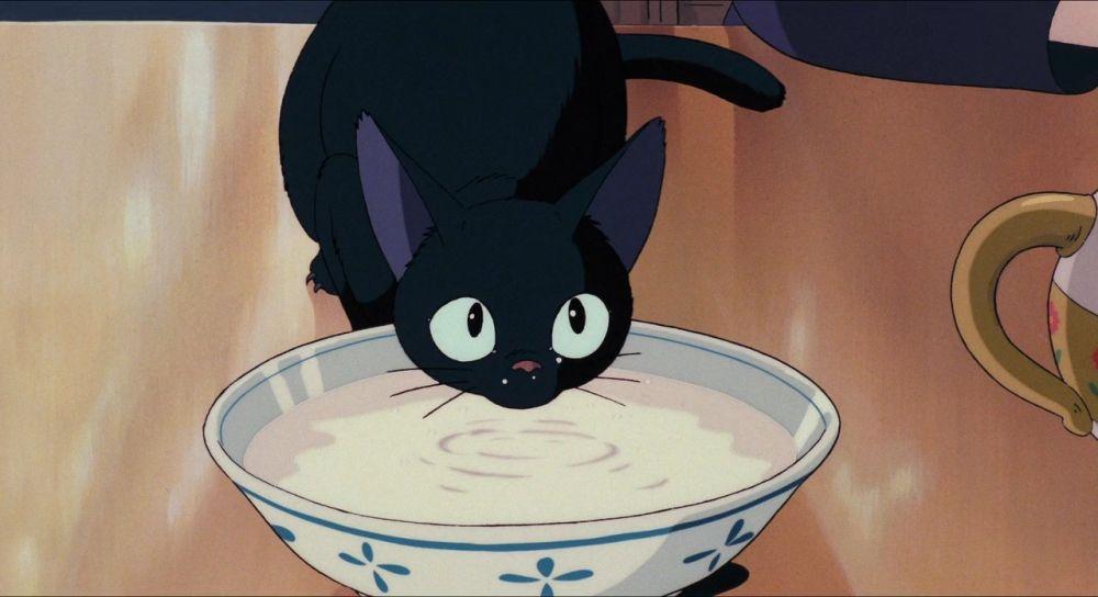 Чёрный Зизи (Дзи-Дзи) – лучший друг 13-летней ведьмы Кики, они даже могут разговаривать друг с другом. Зизи – ровесник хозяйки: по книге, которая легла в основу мультфильма «Ведьмина служба доставки» Хаяо Миядзаки, чёрный котёнок родился одновременно с девочкой и растёт вместе с ней. Кот осторожен и пытается сдерживать порывистую ведьмочку, часто шутит.