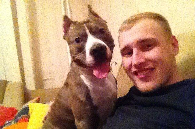 Создать ошейник Антон решил после того, как его любимый пес отравился на улице.