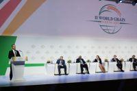 18 ноября 2016. Председатель Правительства РФ Дмитрий Медведев выступает на II Всемирном зерновом форуме в Сочи.
