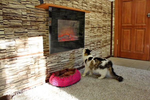 В котокафе есть всё для уюта и тепла, даже подобие камина.
