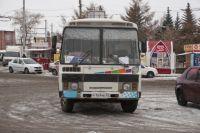 Разные автобусы можно встретить на омских маршрутах.