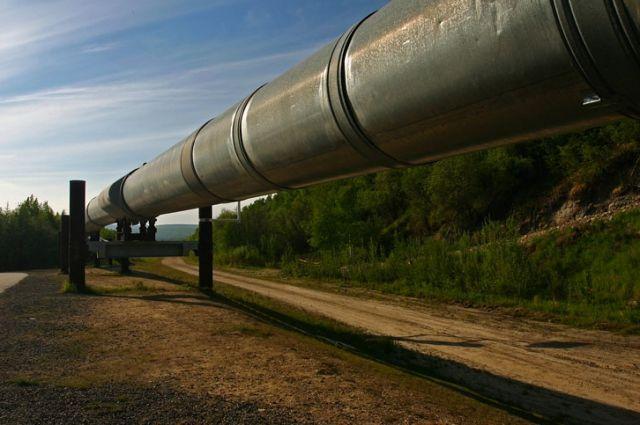 Милиция США применила слезоточивый газ против защитников окружающей среды
