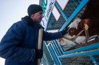 Один из лучших быков-производителей приехал на выставку в Экспоцентр