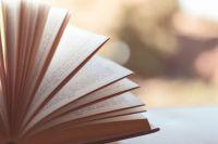 Рейтинг популярных книг среди жителей края составляют в библиотеке