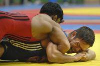 В Воронеже завершилось первенство РФ по вольной борьбе среди юниоров.