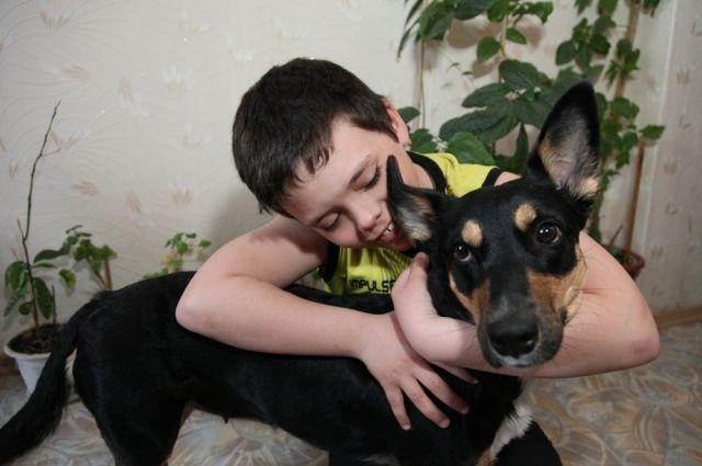 Большинство детей не видит в собаках никакой угрозы.
