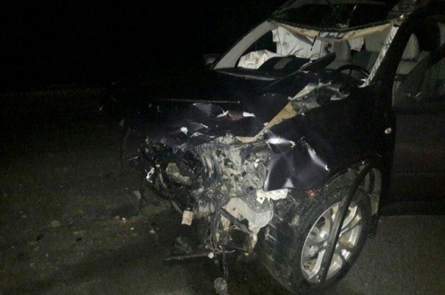 ВНижневартовском районе предпосылкой смертоносного ДТП стал лось