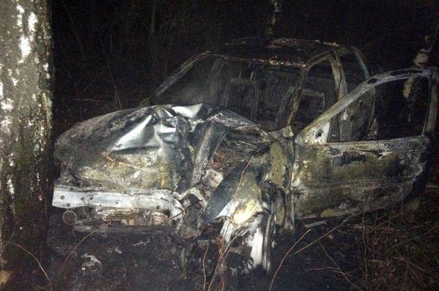 ВТамбовской области иностранная машина врезалась вдерево изагорелась