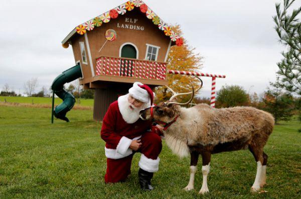 Санта на оленьей ферме.