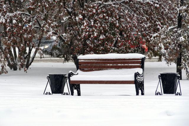ВВоронеже навыходных пройдет мокрый снег, днем будет около 0 градусов