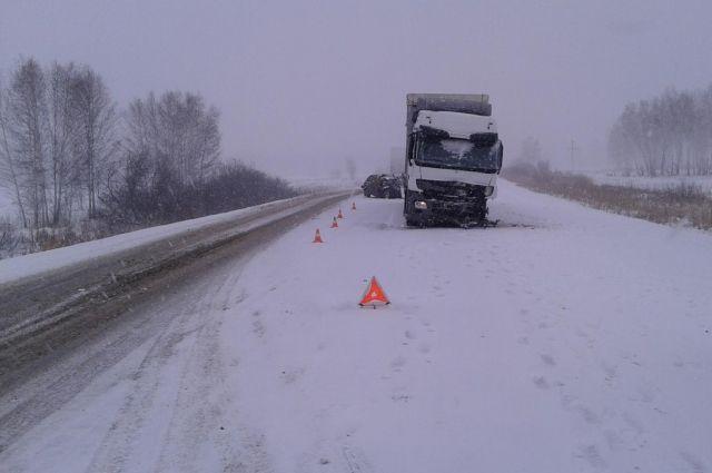 Натрассе вОмской области грузовой автомобиль насмерть сбил женщину