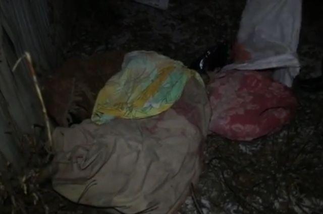 В Первомайском мужчина около ветклиники нашел мешки с кошками и собаками без признаком жизни.