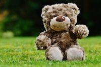 Мягким игрушкам не место в детсаду - так составители санитарных правил заботятся о малышах с аллергией.