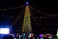 Самая большая новогодняя ёлка будет установлена в Татышев парке.
