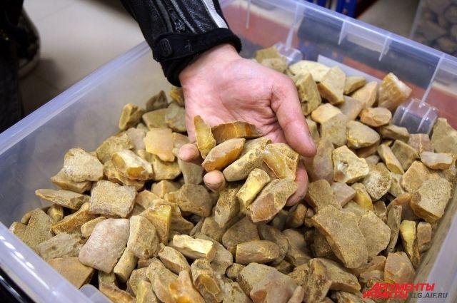 Более 300 тонн янтаря добыли в Калининградской области в 2016 году.