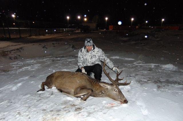 Благородного оленя словили натерритории завода вЛипецкой области