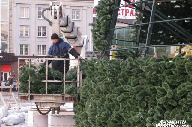 На площади в Калининграде начали собирать главную новогоднюю ель региона.