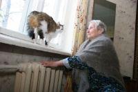 Жители Новосибирска замерзают в своих домах