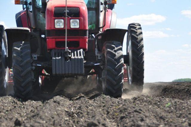 Аграрная отрасль в Омской области - важнейшая составляющая экономики.