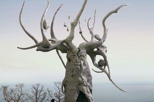 Будущая скульптура может стать местом паломничества туристов.