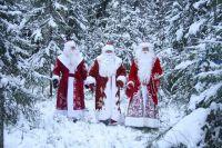 Забег Дедов Морозов проведут в крае
