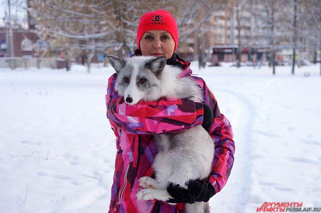 Ольга Гареева часто гуляет по городу вместе с лисами.