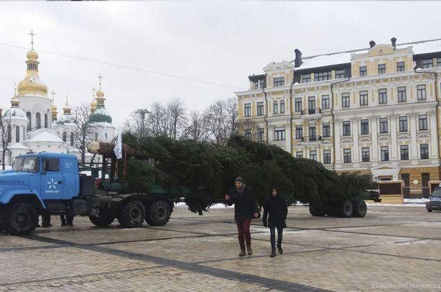 Вглобальной web-сети показали фото основной новогодней елки Украинского государства