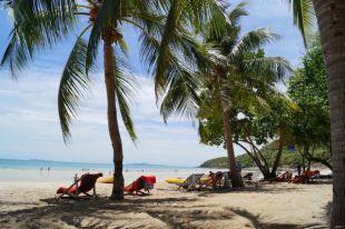 Участники шоу оказываются на острове Занзибар.