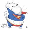 Supercat готов спасать мир.