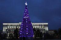 Самая высокая колючая красавица уже установлена на площади Советов Ростова, её высота18 метров.