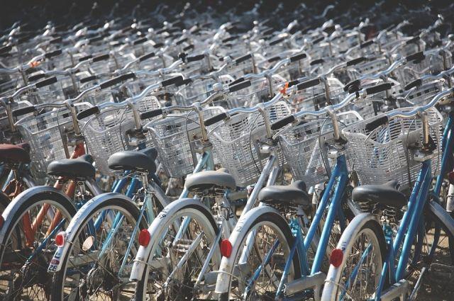 49-летний петербуржец втянул вкражу велосипедов 9-летнего ребенка