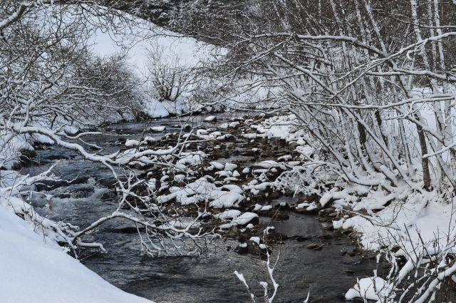 Русло реки Абы будет расчищено.
