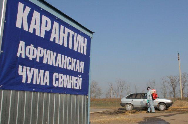 Молдова запретила импорт украинской свинины