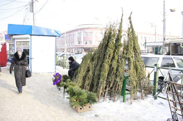 Ёлку в Иркутске можно будет купить и 31 декабря.