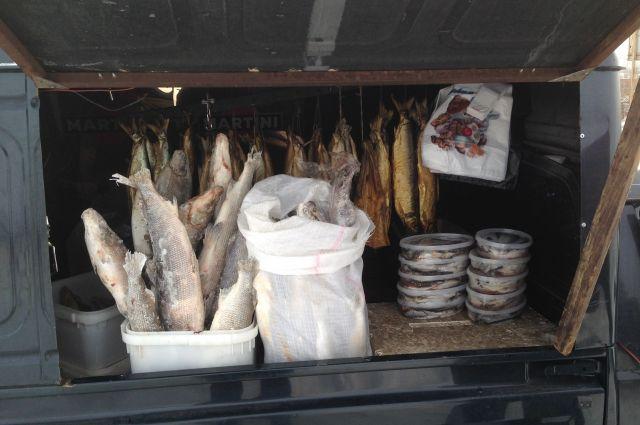 Очень часто в мясе и рыбе, реализуемых в местах несанкционированной торговли, выявляют кишечную палочку.