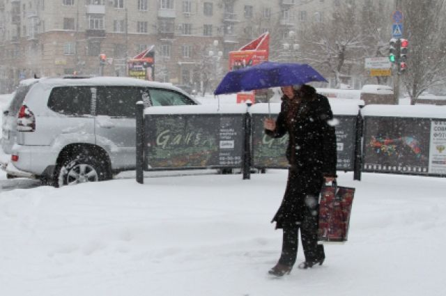 Фото: vlg.aif.ru