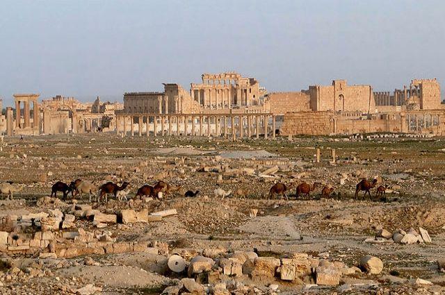 ВКСРФ исирийская армия вытеснили боевиковИГ изПальмиры