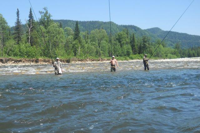 Рыбалка на юге области до сих пор отменная.
