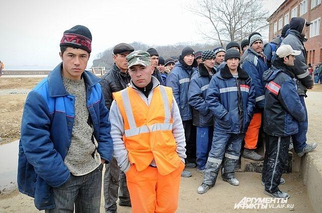 Медведев определил квоты наиностранных работников посферам экономики