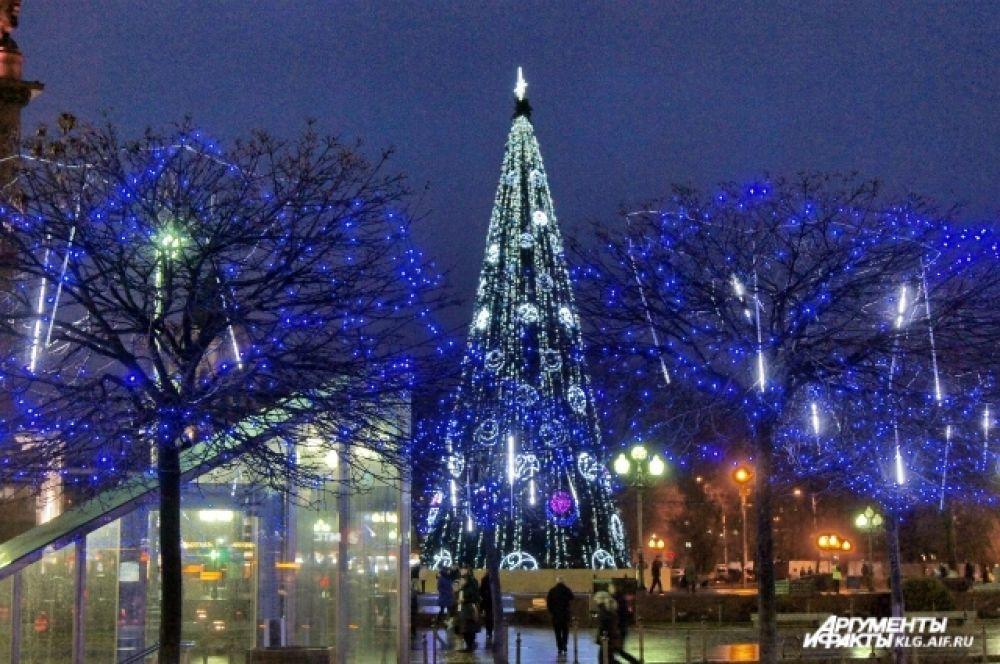 Главную городскую ель на площади Победы установили раньше обычного.