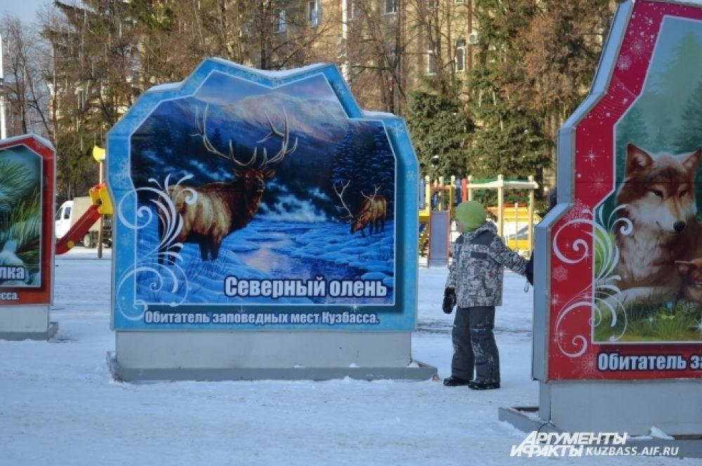 Так как темой стали кузбасские заповедники, власти решили рассказать кемеровчанам и гостям города не только о животных, населяющих наш регион, но и о природных памятниках.
