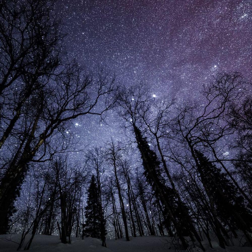 Вот это небо на фоне леса!