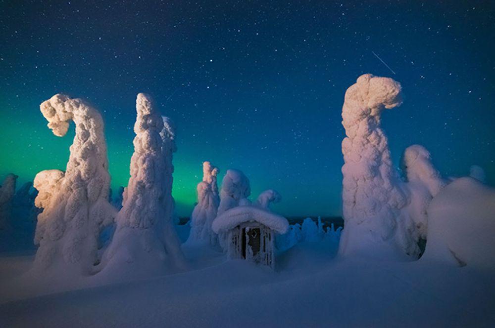 Вот так выглядит безмятежность. Обратите также внимание на то, что снега тут так много, что даже стволы деревьев прогибаются
