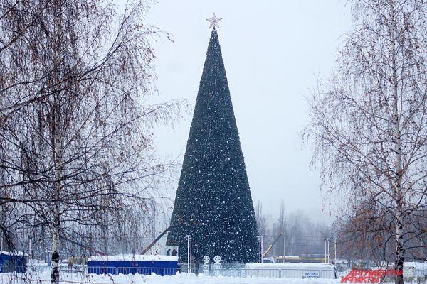 Стоит отметить, что работы по монтажу металлоконструкций и ветвей новогодней ели на эспланаде завершатся к 15 декабря 2016 года. В этот день главный символ Нового года загорится огнями.