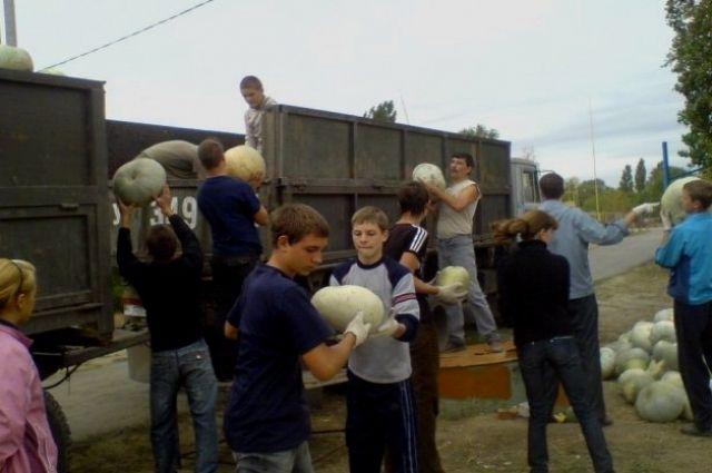 Дети сами выбирают, куда отправиться, на вырученные от урожая средства.