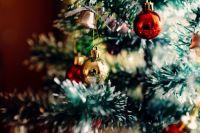 Британское издание Daily Mail заинтересовалось падением мариинской елки.