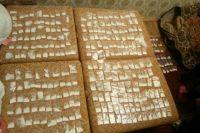 Сожители из Орска хранили у себя дома крупную партию синтетического наркотика