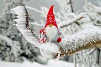 В некоторых странах Новый год считается исключительно детским праздником, потому подарки там дарят только самым маленьким.