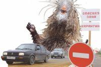 За 10 месяцев 2016 года от укусов животных пострадало 2486 человек.