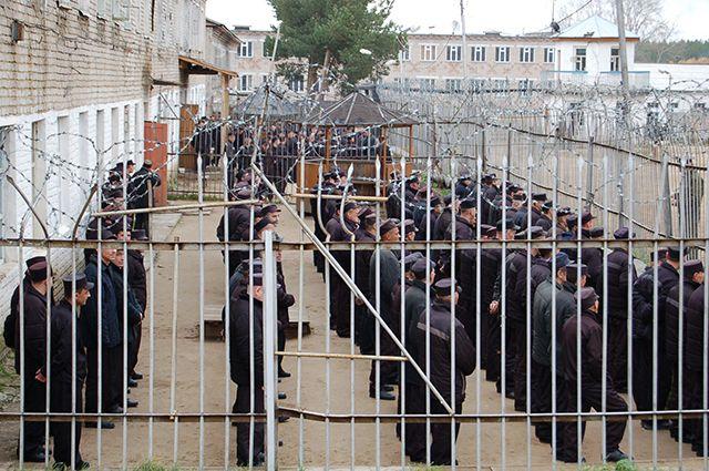Количество осужденных и лиц, содержащихся под стражей, снижается